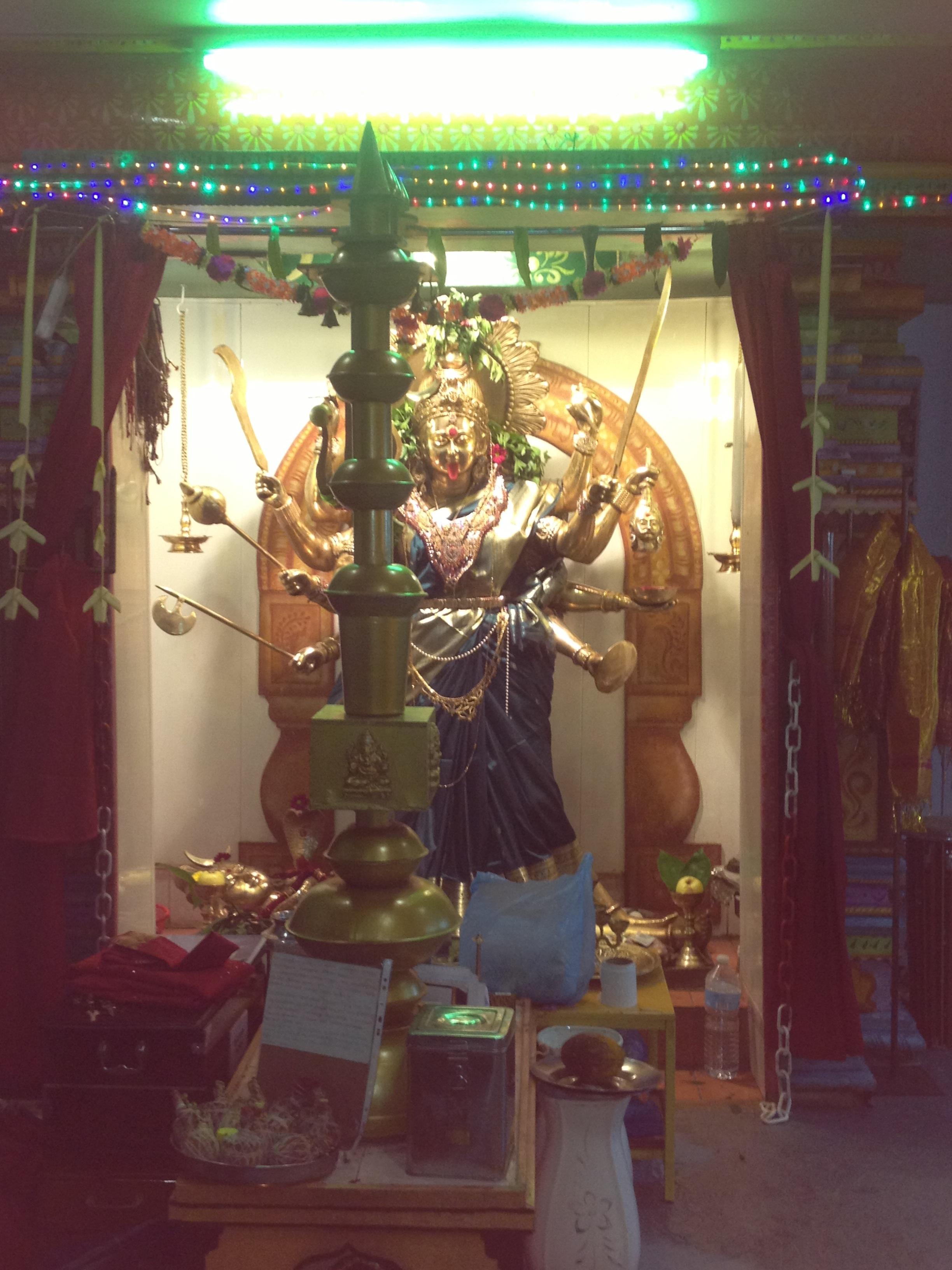 photo_temple_hindou_paris-15.01.15